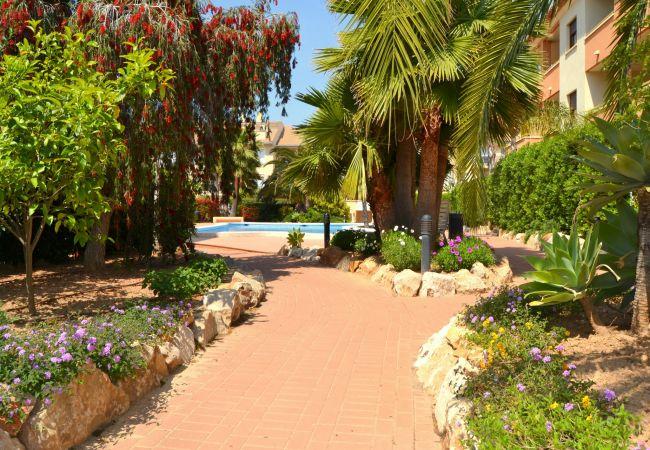 Ferienwohnung in Javea - Apartamento Benvinguts Javea - 5021