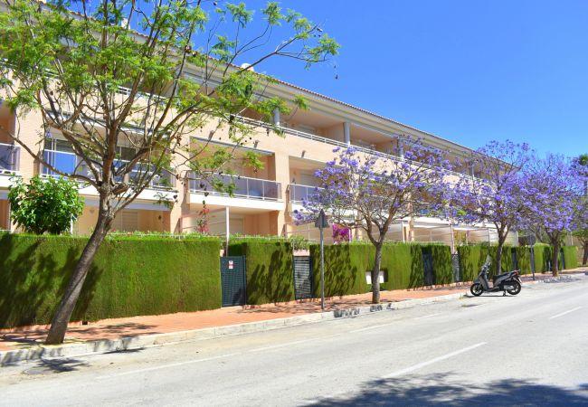 Ferienwohnung in Javea - Apartamento Golden Gardens Javea - 5003